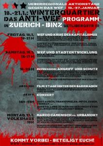 Politprogramm gegen das WEF 2013